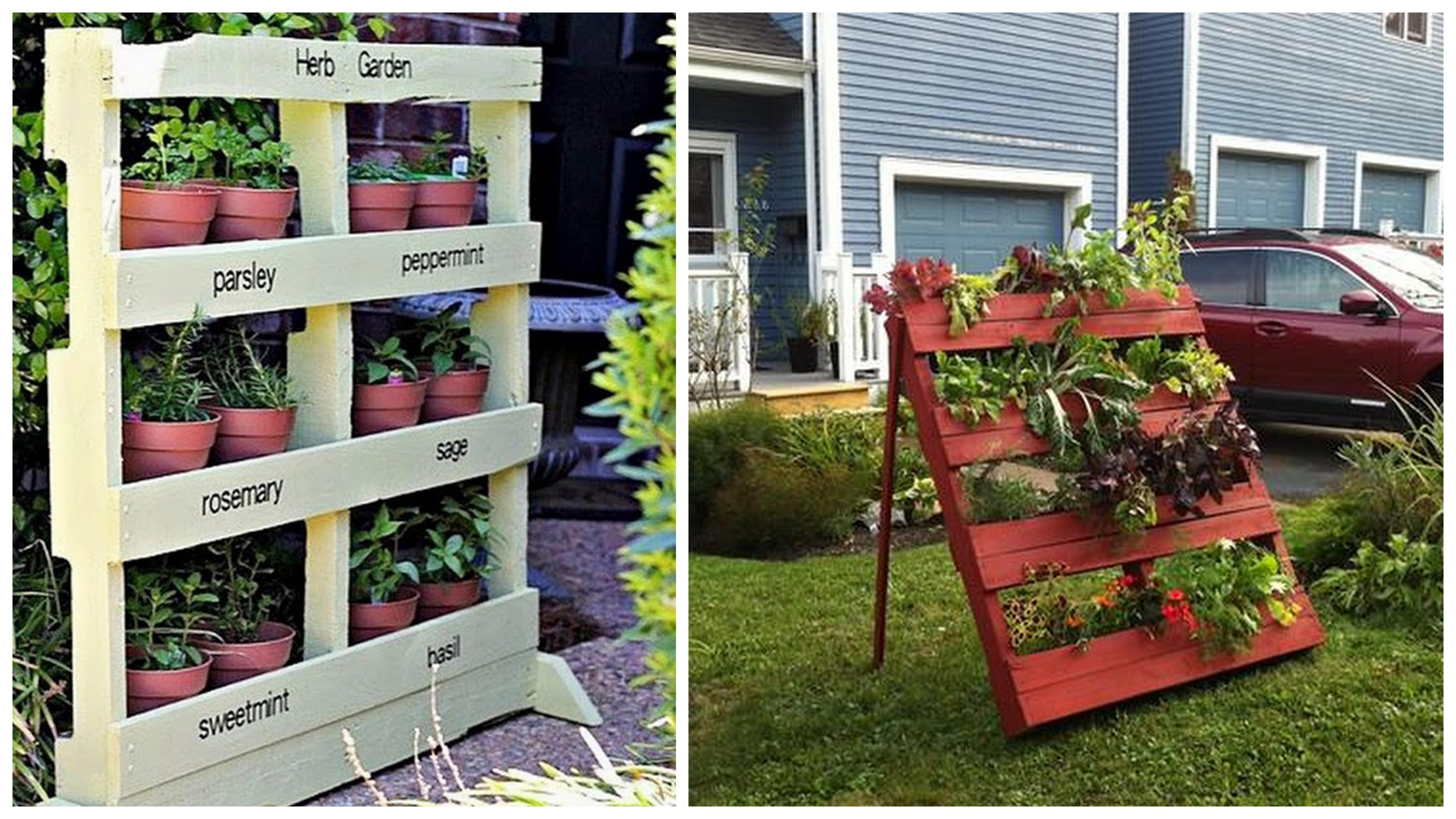 Construyendo el palet de hierbas arom ticas in mensa - Que hacer con un palet ...